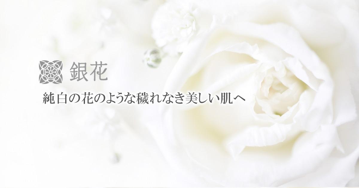 銀花シリーズバナー